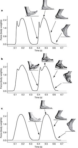Barefoot Running Diagram