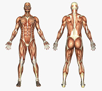 How can physio near me help
